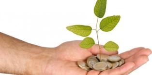 Kisah Rasulullah dan Uang 8 Dirham